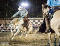Bronco rides at the Mooloolah Valley Rodeo