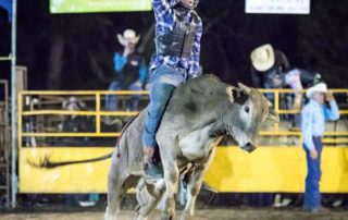 Bull ride at Mooloolah Rodeo