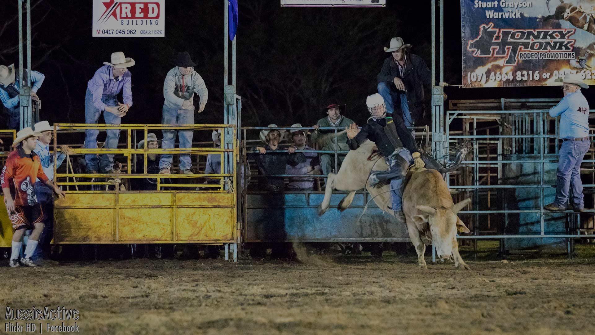Bucking bull at the Mooloolah Rodeo